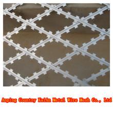BTO / CBT10-65 Fil de rasoir en PVC / fil de fer barbelé / fil de rasoir galvanisé ---- usine de 30 ans
