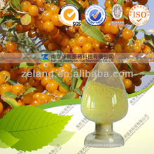 Sea Buckthorn Extract Seabuckthorn Berry Oil