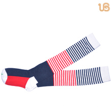 Women′s Colorful Knee High Sock