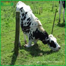 Cerca de la granja de la cabra de la alta calidad del precio de fábrica