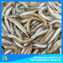 frozen sand lance good supplier perfect exporter fresh food