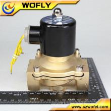 220V Water Solenoid Valve Stainless Steel Valve