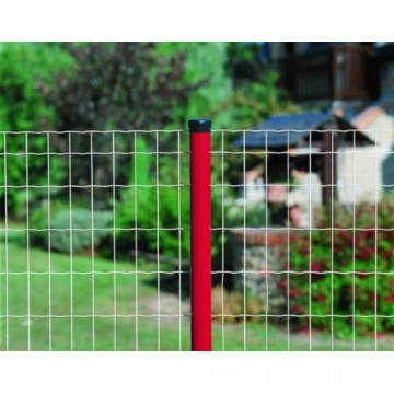 Euro Fence in PVC Coated Different Color