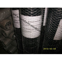 Stainless Steel Hexagonal Wire Mesh for Protection