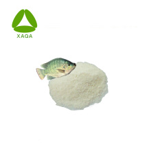 Neocell Super Marine Fischkollagenpulver in Lebensmittelqualität