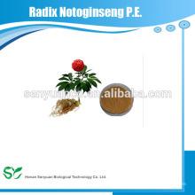 high quality radix notoginseng p.e.