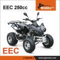 EEC certification 250cc Quad Atv