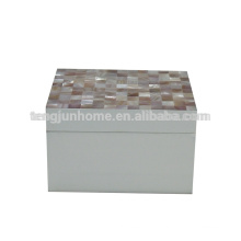 CPN-WPSBXS Розовый Shell Spray Окрашенные Box для хранения в средних размеров
