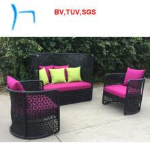 F-Garden Sofa Furniture Rattan Sofa (G-05)