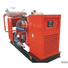 Gas Generator Set (NPG-C303N)