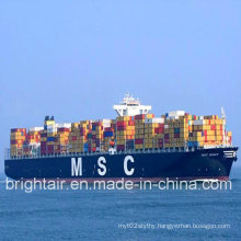 Cheap Logistics Shipping Sea Shipment Line From Guangzhou China to Manzanillo Mexico