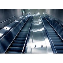 Wirtschaftspreis für Top-Qualität Vvvf Control Rolltreppe in China