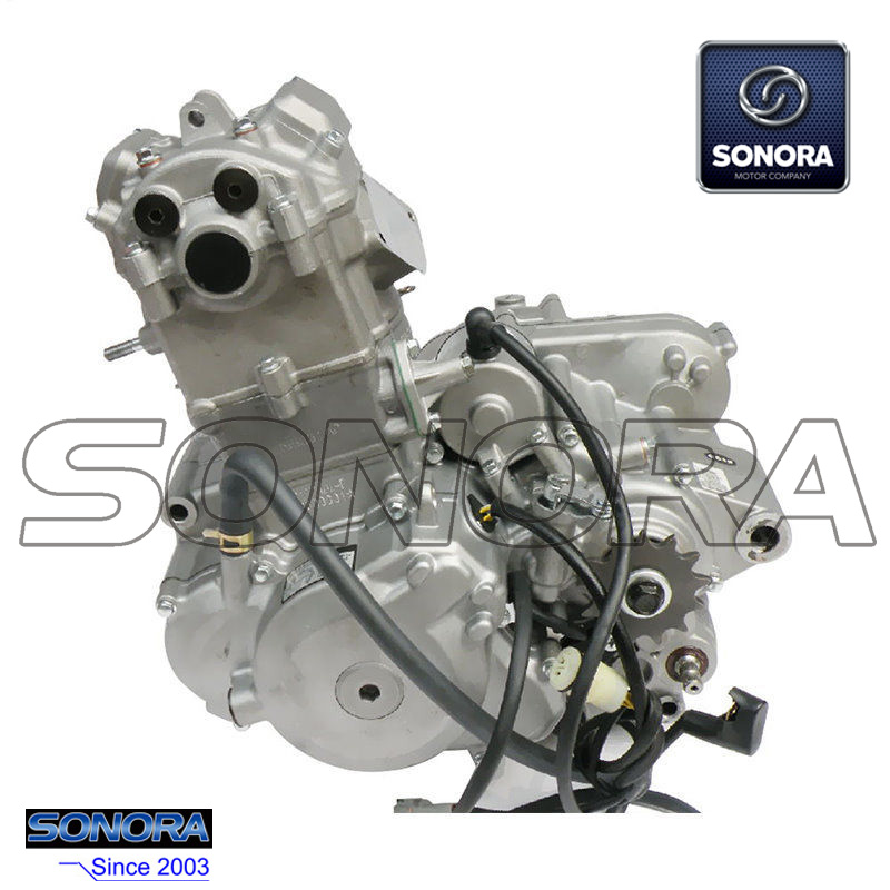 Zongshen NC250 Engine Complete Set (2)