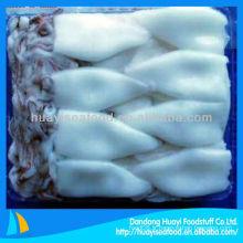 Calamars frais congelés à vendre