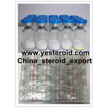 Proteína de aminoácido sintético PT-141 para receptores de melanocortina que broncean sin sol