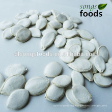 Snow White Pumpkin Seeds In China, Pumpkin Buyer