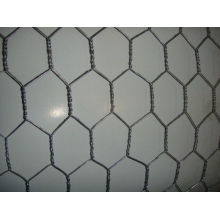"Garden Fence Panels Hexagonal Wire Mesh With 1/2"" Galvanized Wire"