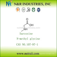 N-Methylglycin / Sarcosin 107-97-1