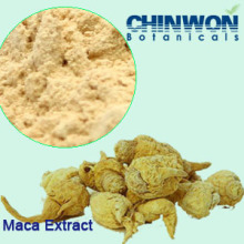 37. Sexual Enhancement Powdered Extract Maca