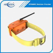Dog Tracking Training Collars GPS GSM