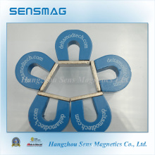 Customized Permanent Horseshoe AlNiCo5 Magnet