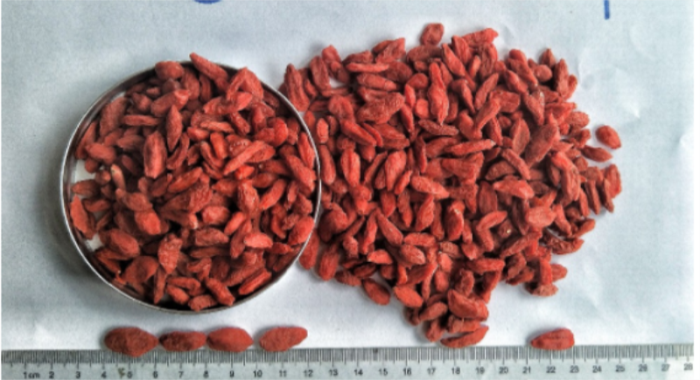 High Quality Certified Top grade Organic goji berry/wolfberry