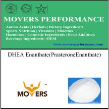 Стероидный энантат DHEA (Prasterone Enanthate)