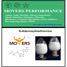 High Quality S-Adenosylmethionine with CAS No: 29908-03-0