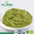 /company-info/539722/organic-matcha-powder/top-quality-certified-organic-matcha-tea-powder-53884125.html