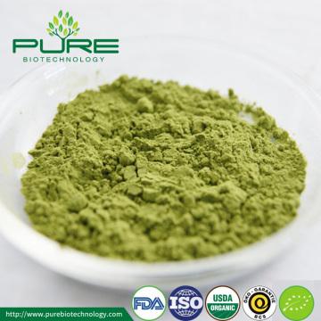 Pó de chá Matcha orgânico certificado de alta qualidade