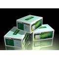 Коробка Печать / Производители / Дешевые Коробки Упаковки