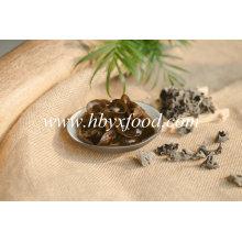 Champignons noirs séchés de produits agricoles du fournisseur chinois