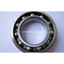 China 6007 Deep Groove Ball Bearings 6008 6009 6010 6006