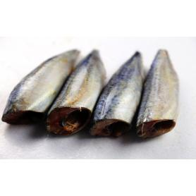 Fresh Sea Frozen Mackerel HGGT