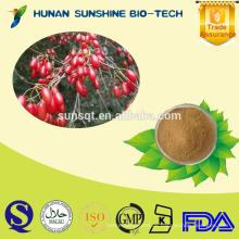 100% natürlicher Fructus Corni Extrakt 1% -98% Loganin CAS: 18524-94-2