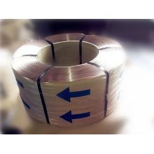 Kupfer beschichtet Reifen Bead Wire