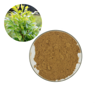 China factory direct wholesale price 100% Natural Cane tea extract powder