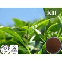 Кингербс Теафлавины 40%, 60% Экстракт черного чая