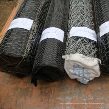 Buen embalaje Hexagonal Wire Wire Net