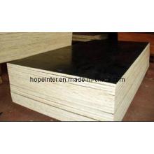 One Time Hot Pressed Plywood - Contrachapado Marino, para los mercados de Oriente Medio