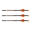 RAVIN - .001 PREMIUM LIGHTED ARROWS
