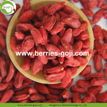 Wholesale Super Food Improve Eyesight Ningxia Wolfberry