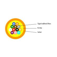Câble de fibre optique intérieur de 12 noyaux avec PVC ignifuge