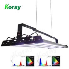 1000W replacement COB led grow lights for VEG/Flower full spectrum led grow lighting