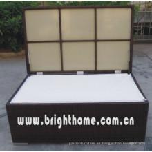 Mejor venta de muebles de mimbre Cojín Box Bg-B07