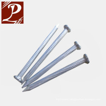 HDG square boat nails for high quality