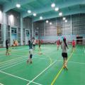 Badminton Court Tile PVC Flooring BWF Approved