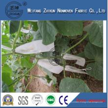 Anti-UV Protector en PP Polypropylène Spunbond Non-tissé pour couverture agricole