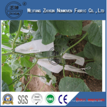 Anti-UV Protector in PP Polypropylene Spunbond Nonwoven Fabric for Agriculture Cover