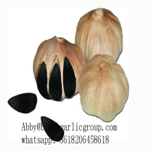 Productos vegetales ajo negro fermentado